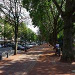 La Königsallee, artère commerçante la plus visitée d'Allemagne, est connue dans le monde entier pour ses boutiques de luxe. Surnommée également « Kö », cette rue certainement la plus réputée de Düsseldorf invite au shopping et à la promenade.